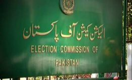 ECP asks political parties  to submit accounts' statement by August  29