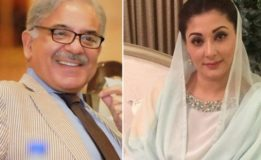 Shehbaz advises Maryam to abstain from politics of confrontation